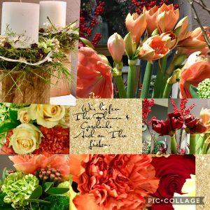 Blumen | Pflanzne | Gestecke